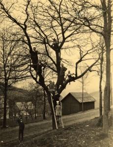 Altes Geraetehaus